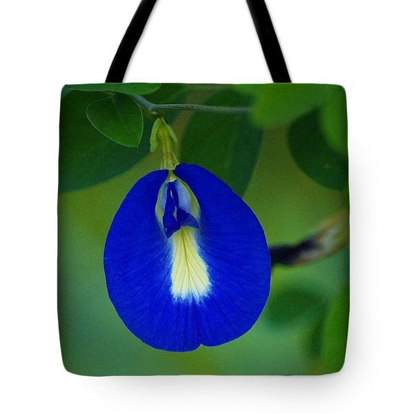 Butterfly Pea Tote Bag by Blair Wainman