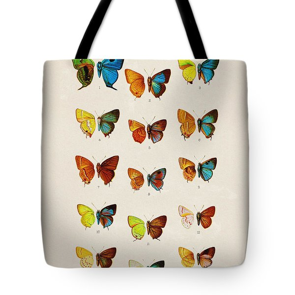 Butterfly Plate Tote Bag
