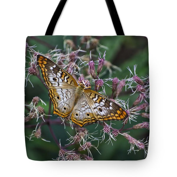 Tote Bag featuring the photograph Butterfly Soft Landing by Thomas Woolworth