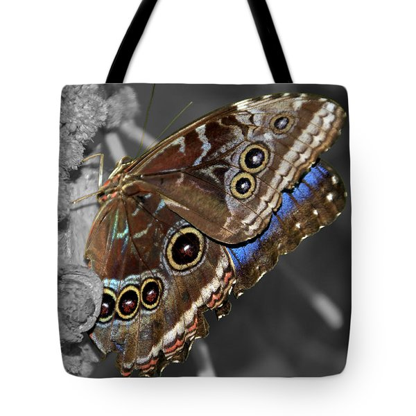 Butterfly Spot Color 1 Tote Bag by Bob Slitzan