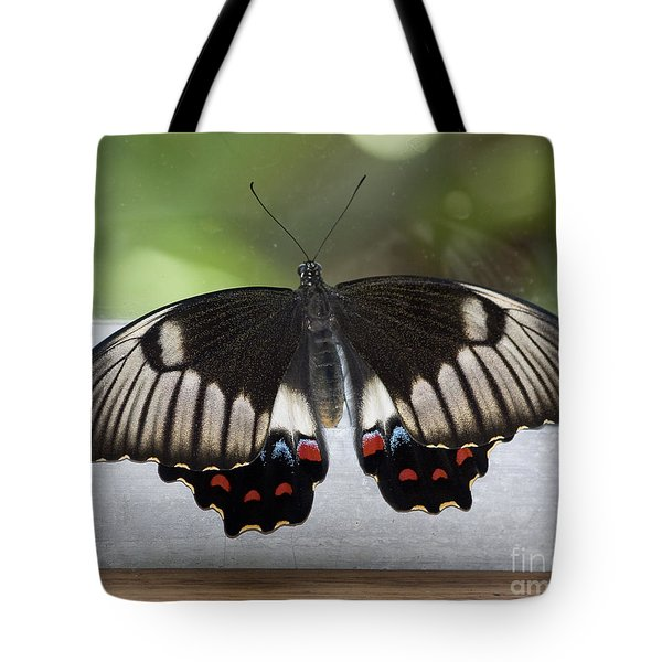 Butterfly Tote Bag by Steven Ralser