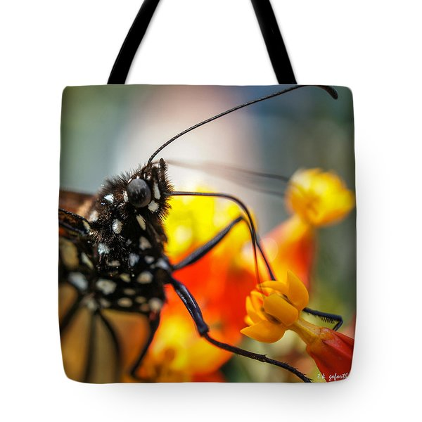 Butterfly Tongue Squared Tote Bag by TK Goforth