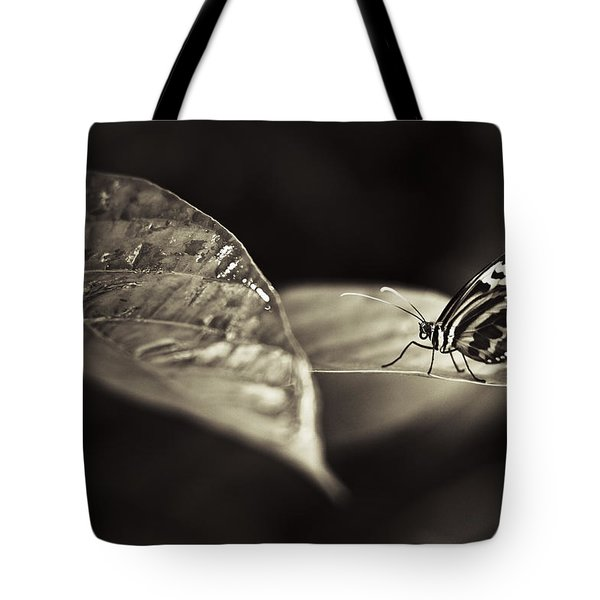 Butterfly Warm Tone Tote Bag