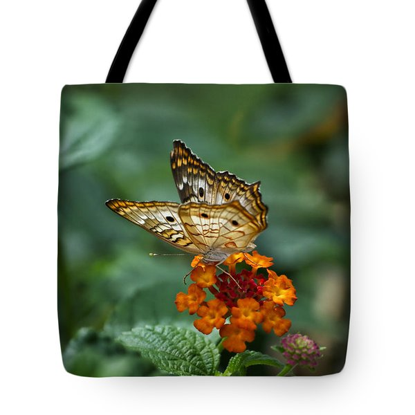 Tote Bag featuring the photograph Butterfly Wings Of Sun Light by Thomas Woolworth