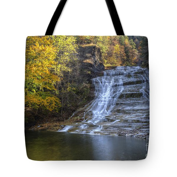 Buttermilk Falls Autumn Tote Bag by Colin D Young