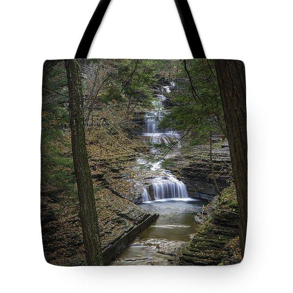Buttermilk Falls In Autumn IIi Tote Bag