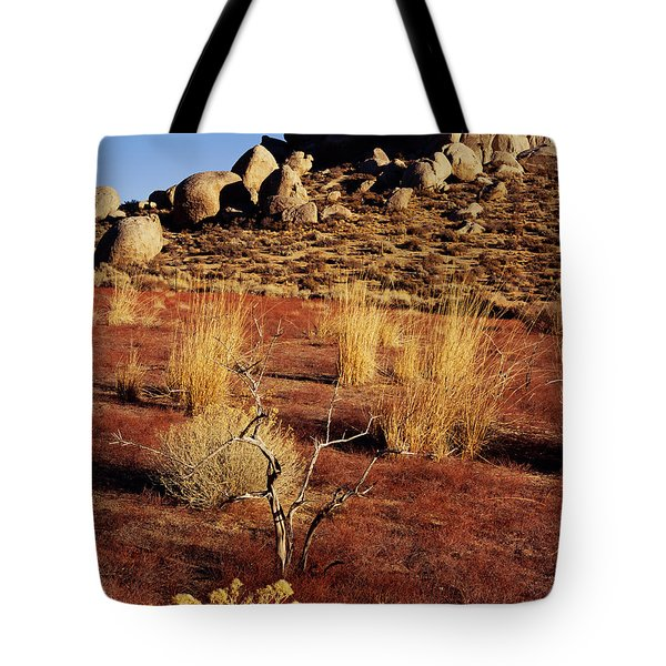 Buttermilks - Red Brush Tote Bag