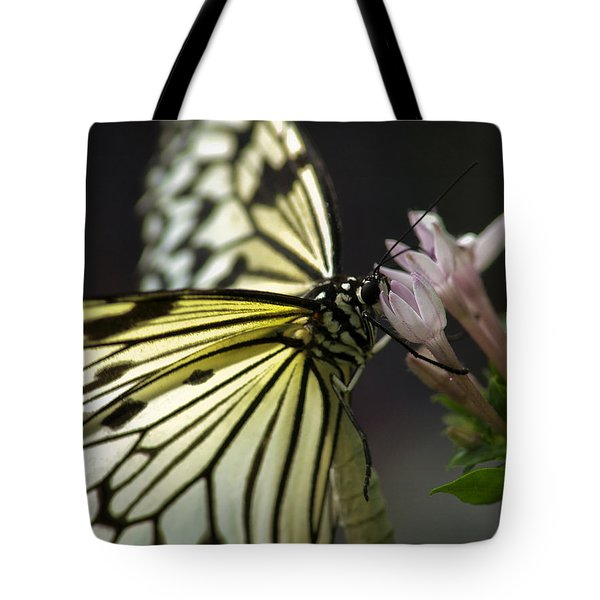 Tote Bag featuring the photograph Butteryfly by John Swartz