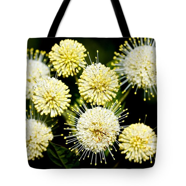 Buttonbush Tote Bag