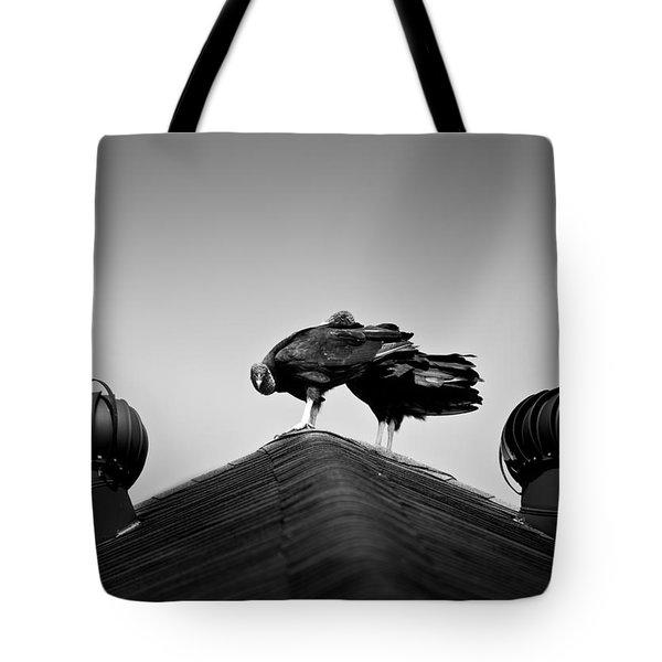 Buzzards 2 Tote Bag