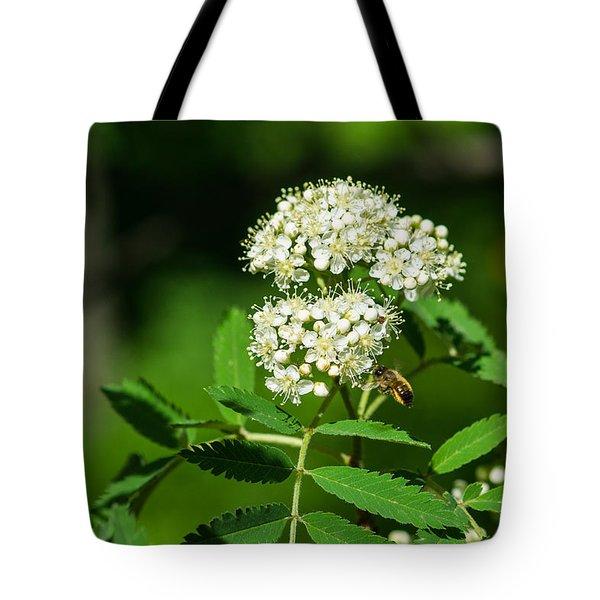 Buzzing Bee Tote Bag by Alexander Senin