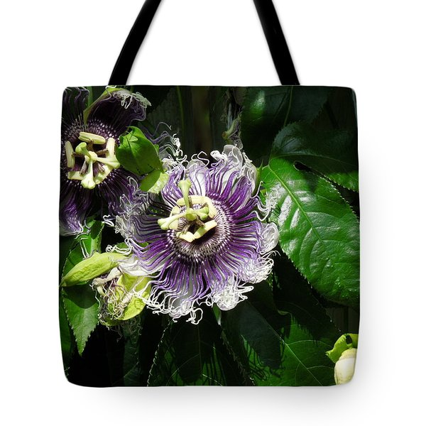 Tote Bag featuring the photograph Byron Beauty by Ron Davidson