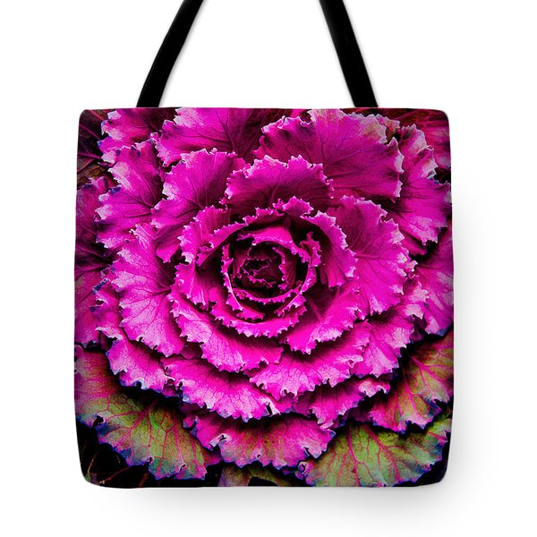 Cabbage Tote Bag by Jon Burch Photography