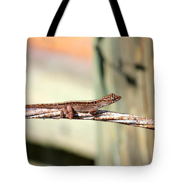 Tote Bag featuring the photograph Cable Wire Bridge by Cyril Maza