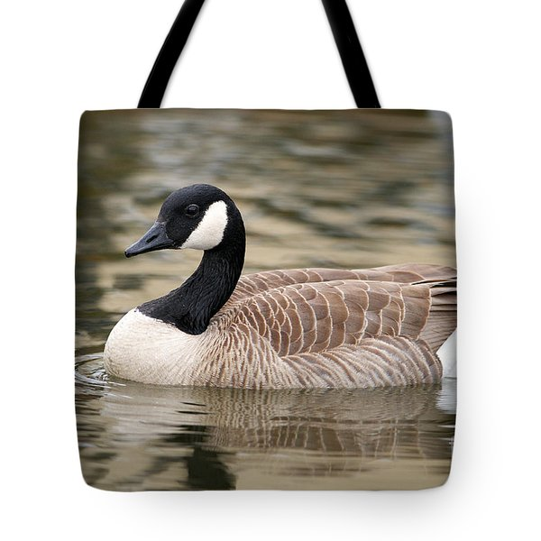 Cackling Goose Tote Bag by Sharon Talson