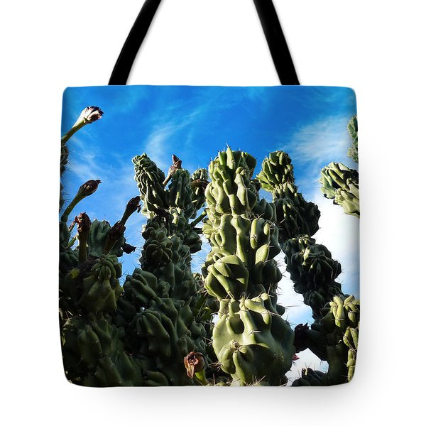 Tote Bag featuring the photograph Cactus 1 by Mariusz Kula