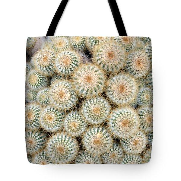 Cactus 35 Tote Bag