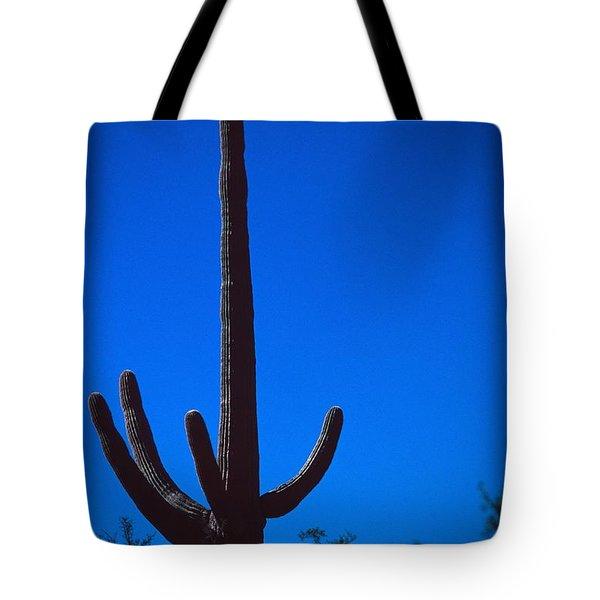 Cactus And Moon Tote Bag