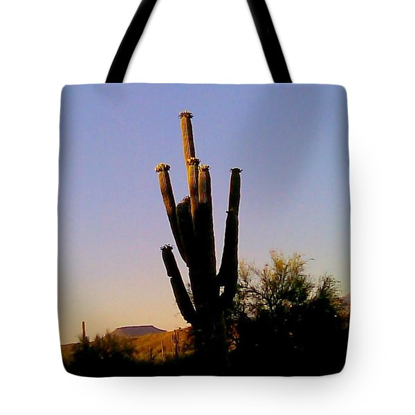Tote Bag featuring the photograph Cactus At Sundown by Fred Wilson