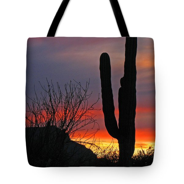 Cactus At Sunset Tote Bag by Marcia Socolik