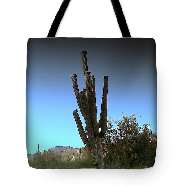 Tote Bag featuring the photograph Cactus At Twilight by Fred Wilson