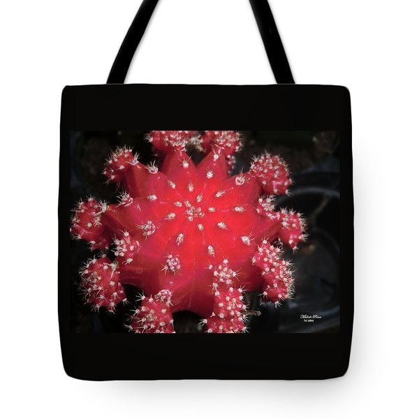 Cactus Beauty  Tote Bag