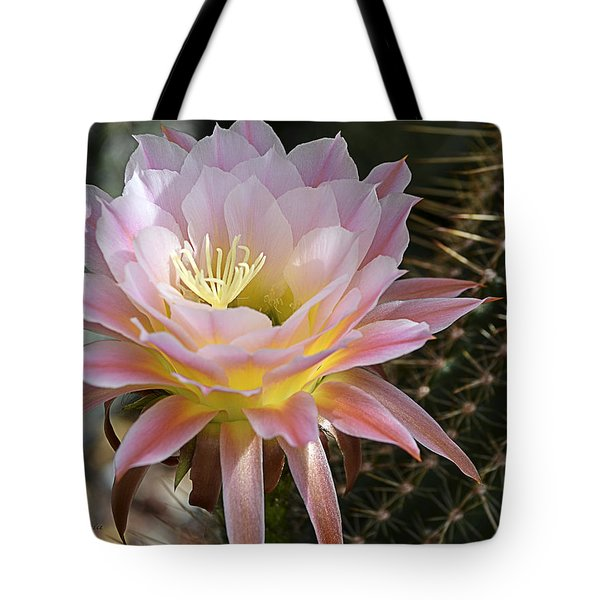 Cactus Bloom In Pink Tote Bag by Julie Palencia