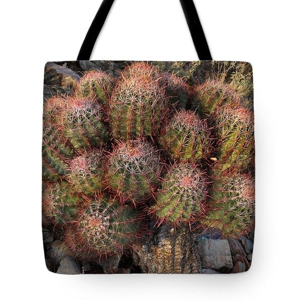 Cactus Burst Tote Bag