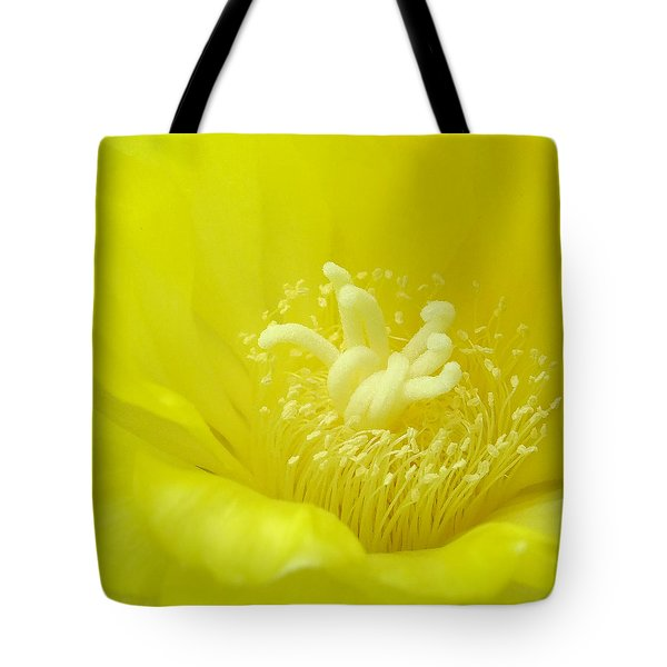 Cactus Dance Tote Bag by Bill Morgenstern