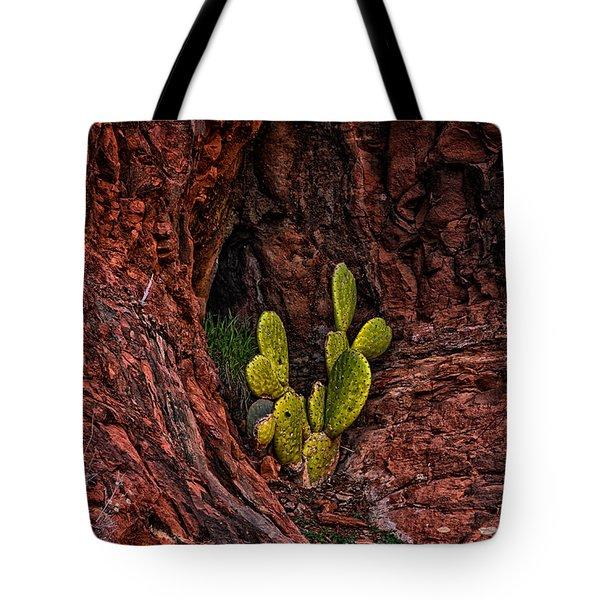 Cactus Dwelling Tote Bag