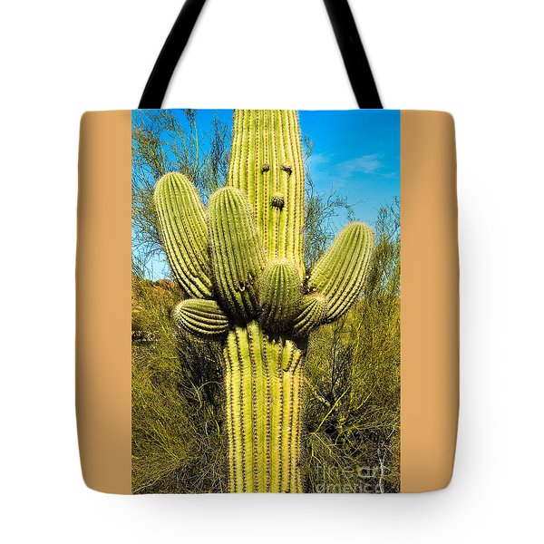 Tote Bag featuring the photograph Cactus Face by Mae Wertz