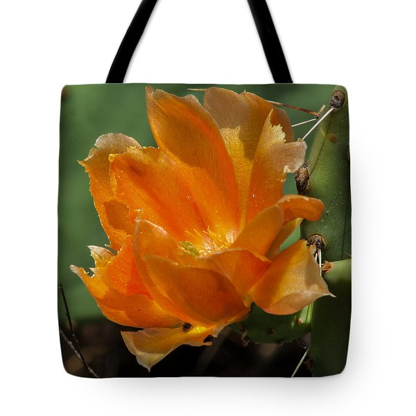 Cactus Flower In Orange Tote Bag