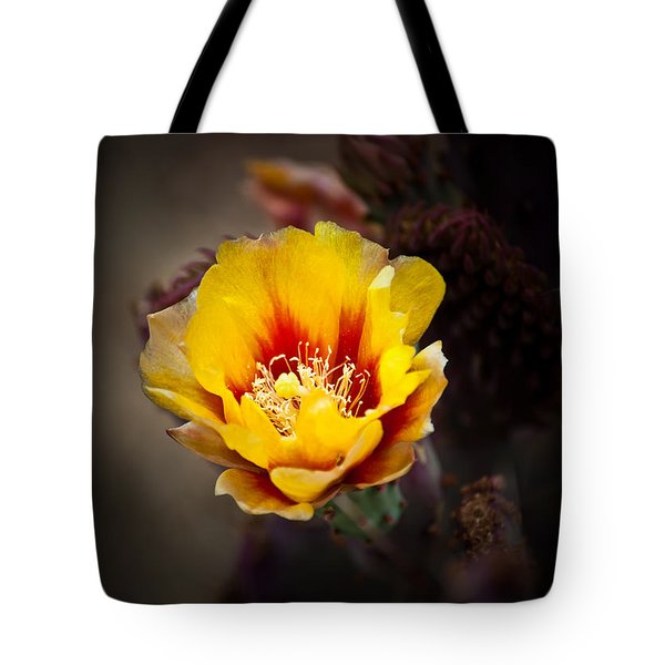 Cactus Flower Tote Bag by Swift Family