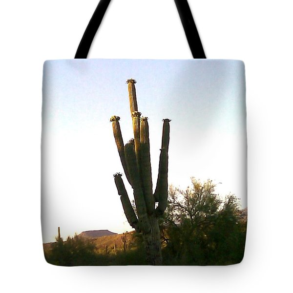 Cactus In Morning Tote Bag by Fred Wilson