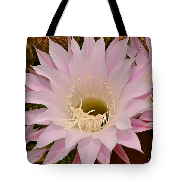 Tote Bag featuring the photograph Cactus In The Backyard by Debby Pueschel