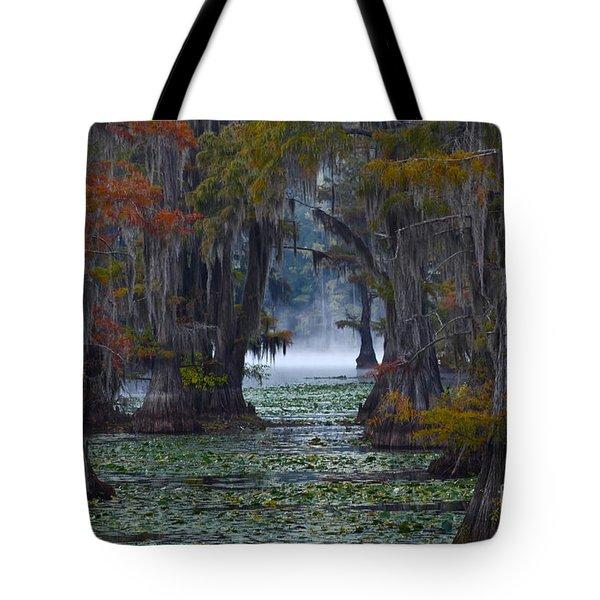 Caddo Lake Morning Tote Bag