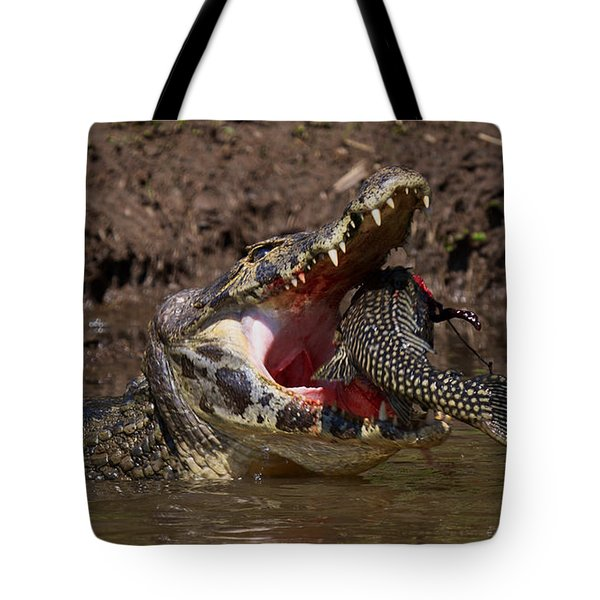 Caiman Vs Catfish 1 Tote Bag