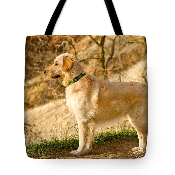 Cali Gold Tote Bag by Bill Gallagher