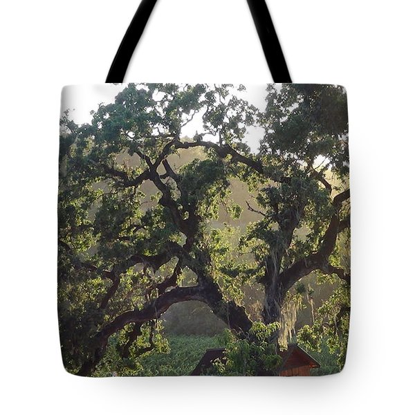 Tote Bag featuring the photograph Cali Setting by Shawn Marlow