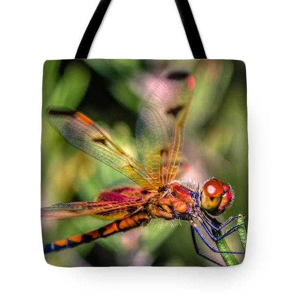 Calico Pennant Tote Bag by Rob Sellers