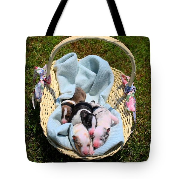 Calicos Pups At Two Days Tote Bag