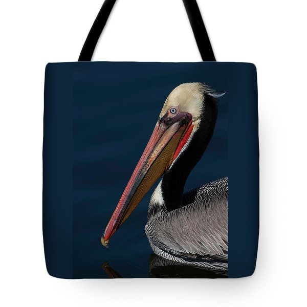 Tote Bag featuring the photograph California Brown Pelican Portrait by Ram Vasudev