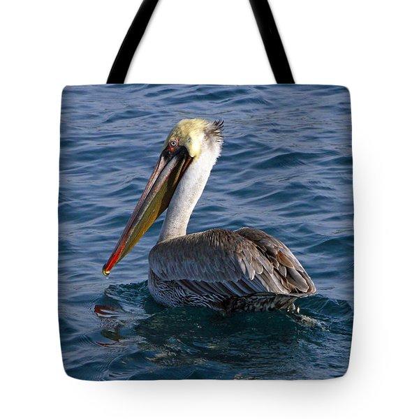 California Brown Pelican Tote Bag by Shoal Hollingsworth