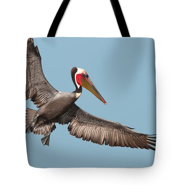 Tote Bag featuring the photograph California Brown Pelican With Stretched Wings by Ram Vasudev