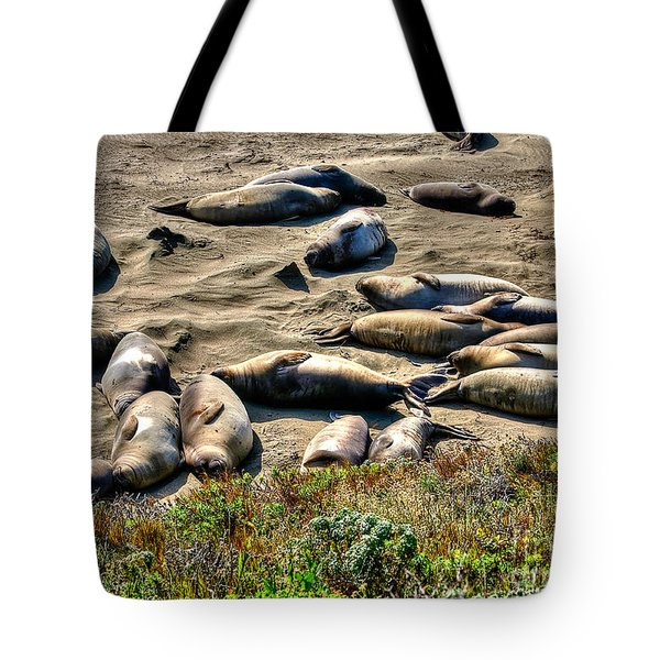 Tote Bag featuring the photograph California Dreaming by Jim Carrell