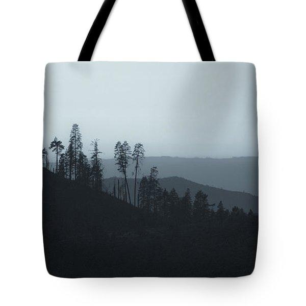 California Gray Skies Tote Bag