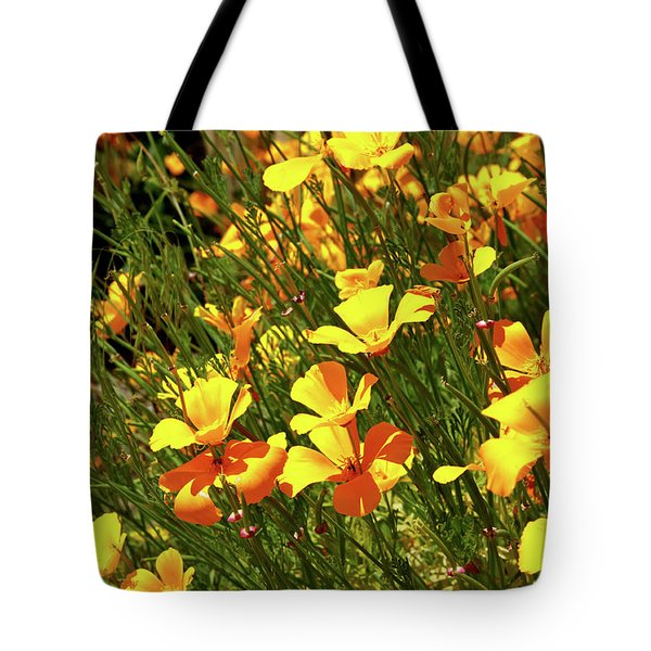 California Poppies Tote Bag by Ed  Riche
