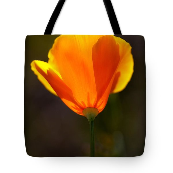 California Poppy 2 Tote Bag by Robert Woodward