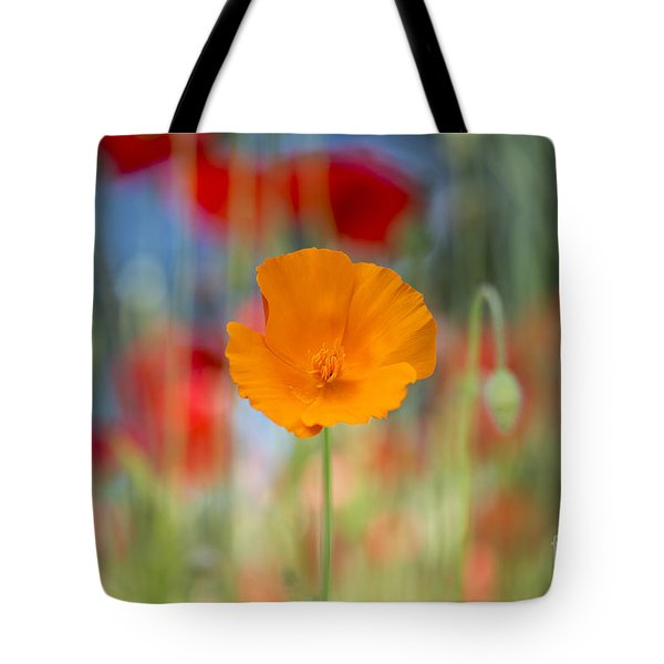 California Poppy Tote Bag by Tim Gainey