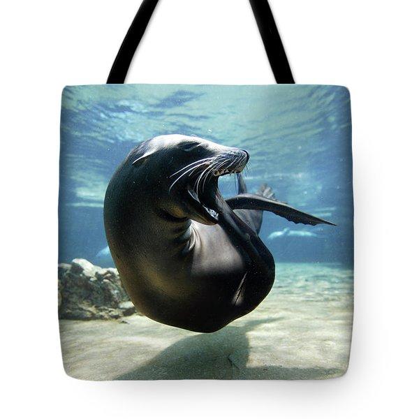 California Sea Lion Yawning Tote Bag by Hiroya Minakuchi